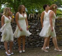 The party of bridesmaids